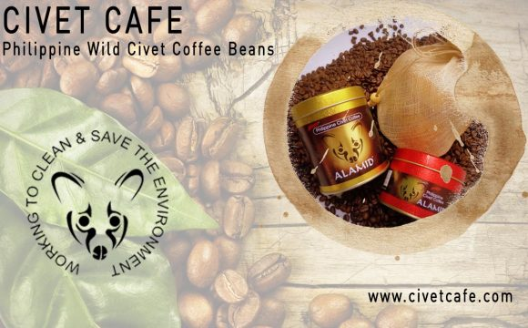 civet cat coffee making process