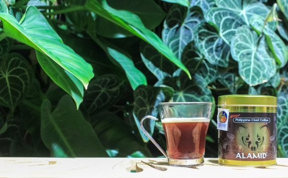 method for making civet coffee